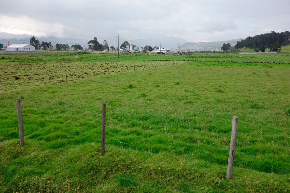 terreno en el parque industrial turubamba
